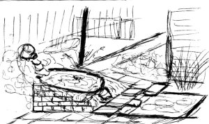 1996 my pond design